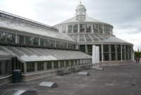 Botanischer Garten, Palmenhaus, Kopenhagen, Dänemark