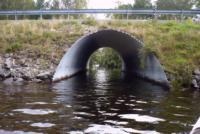 Kanutour 2009, Dalsland, Schweden