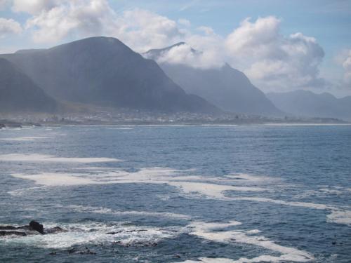 P8060386 Coastline