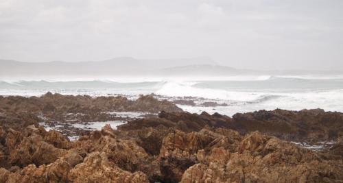 P8070491 Coast (1)