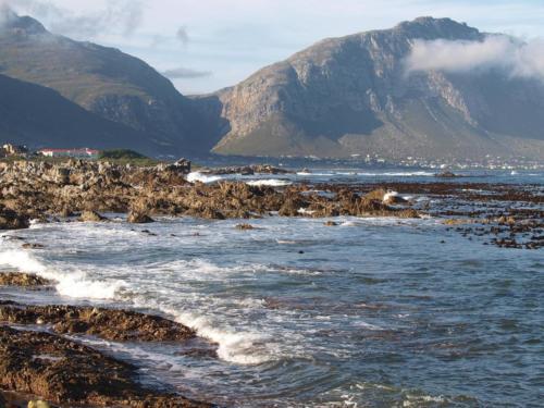 P8090985 Coastline