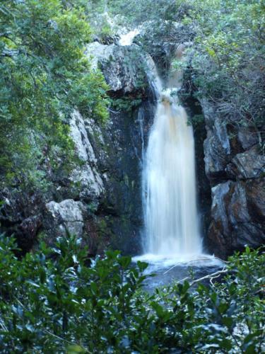 P8101040 Waterfall